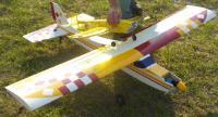 Name: Crash7_Earl_at_landing.jpg Views: 173 Size: 95.4 KB Description: