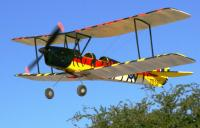 Name: tiger moth really close 005.jpg