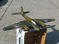 Name: jeffsch_Mosquito_2.jpg