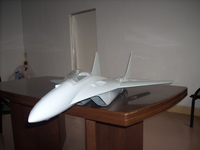 Name: Mig28 Gray.jpg