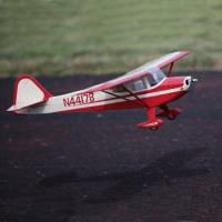 Name: eflite tcraft 450 - 1.jpg