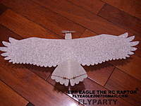 Name: micro epp eagle13.JPG