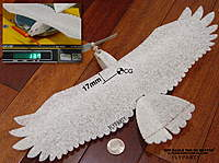Name: micro epp eagle_CG.jpg