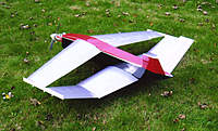 Name: AP Twinwing covered 1.jpg