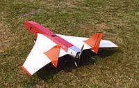 Name: AP wing.jpg