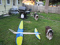 Name: IMG_0193.jpg