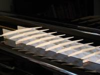 Name: DSC00445.jpg