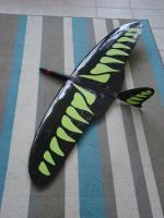 Name: DSC01776.jpg