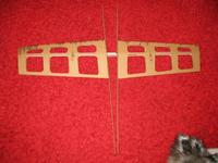 Name: Cardboard III Wings.jpg