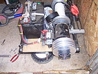 Name: MEGA_GONAD.jpg