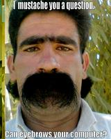 Name: mustache-you-a-question-eyebrows-computer.jpg