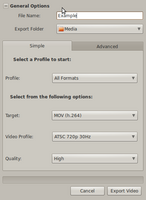 Name: OpenShot - Export Video.png