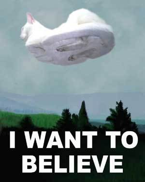 http://static.rcgroups.net/forums/attachments/1/3/6/7/2/8/a1477005-1-hovercat-i-want-to-believe.jpg?d=1189635235