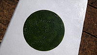 Name: DSCF0359.jpg
