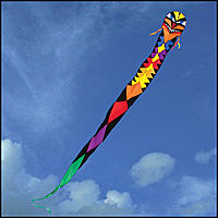 Name: Dragon kite.jpg