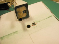 Name: P1010144 copy.jpg