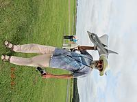 Name: 24 Dolphin.jpg Views: 35 Size: 190.2 KB Description: