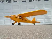 Name: Burt Goldberg Cub covered resized70.jpg