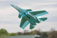 "Name: SU-37-9407.jpg Views: 150 Size: 79.0 KB Description: Own Design 48"" SU37"