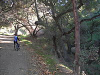 Name: DSCN1606.jpg