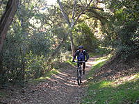 Name: DSCN1607.jpg