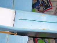 Name: 100_1468.jpg