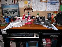 Name: DSCN8544.jpg