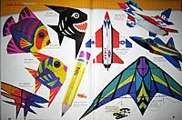 Name: Sunfish_ Shark_ Angelfish_ Small Triangulation_ Pencil_ F-16s_ F-22_ Luna Stunt Kite.jpg