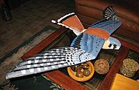 Name: top-kestrel-nearly-complete.jpg