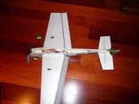 Name: P1010387.jpg