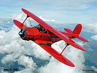Name: Red Staggerwing.jpg