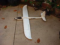 Name: EZ Glider2.jpg