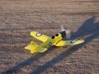 Name: 000_0007.jpg