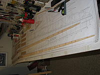 Name: IMG_5161.jpg