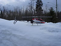 Name: DSC03195.jpg