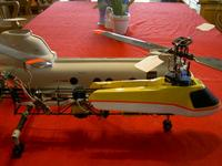 Name: dragonflyprobodyon.jpg