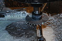 Name: DSC_2461.jpg