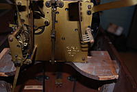 Name: DSC_5390.jpg