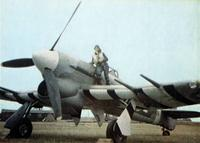 Name: Hawker_Typhoon.jpg