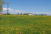 Name: 100_2480.jpg