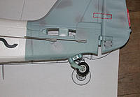 Name: scale comparison (8).jpg