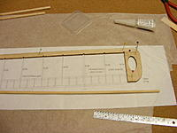 Name: 2012_0128N170002.jpg