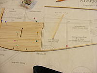 Name: 2012_0128N170013.jpg