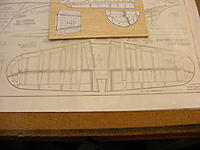 Name: DSCF1235.jpg