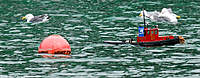 Name: post.2010.0912.8435.jpg