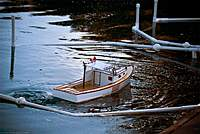 Name: 2011.04.03.0003.jpg