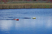 Name: 100_0663.jpg