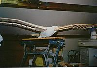 Name: eagle-012.jpg