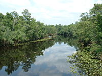 Name: DSCF0082.jpg