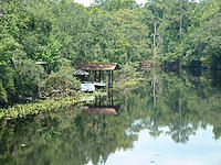 Name: DSCF0085.jpg